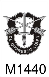 1st_special_forces_dui.png (40344 bytes)