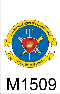 22nd_marine_expeditionary_unit_emblem_dui.png (40070 bytes)