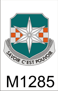 313_military_intelligence_battalion_dui.png (40120 bytes)