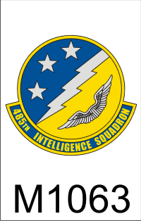 485th_intelligence_squadron_dui.png (44975 bytes)