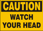 CAUTION WATCH HEAD.png (9622 bytes)