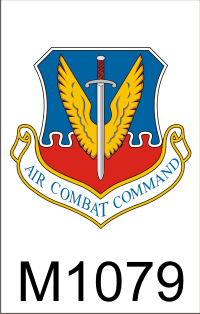 air_combat_command_dui.png (47347 bytes)