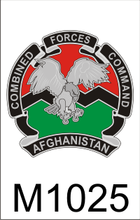 combined _forces_command_afghanistan_1_dui.png (53297 bytes)