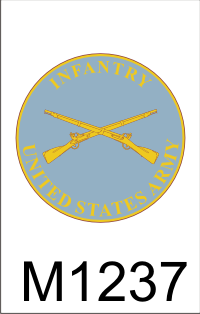 infantry_plaque_dui.png (33409 bytes)