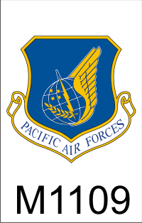 pacific_air_forces_dui.png (44940 bytes)