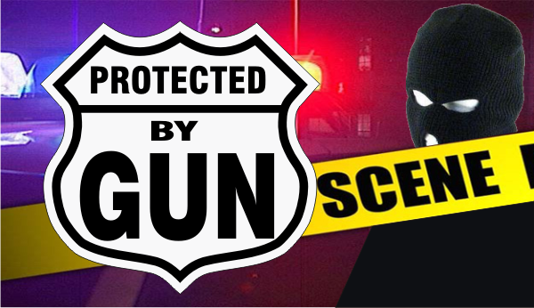 protected by gun large.png (251942 bytes)