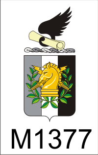 psychological_operations_coat_of_arms_dui.png (34262 bytes)